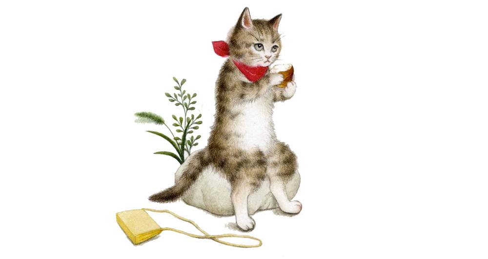 猫を飼ってないのに、猫を描かなくてはいけない。どうする?